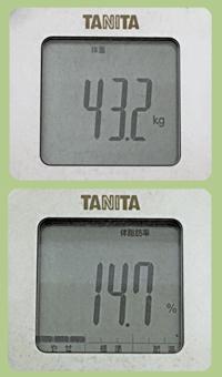 体重体脂肪ブログ用.jpg