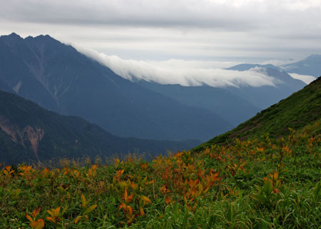 穂高と雲海.jpg